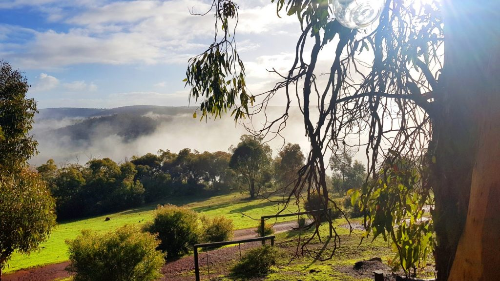 chittering valley misty views in winter